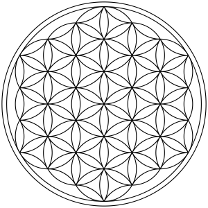 Flower of Life Shape